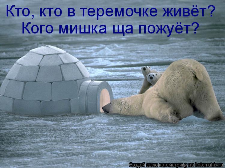Котоматрица: Кто, кто в теремочке живёт? Кого мишка ща пожуёт?