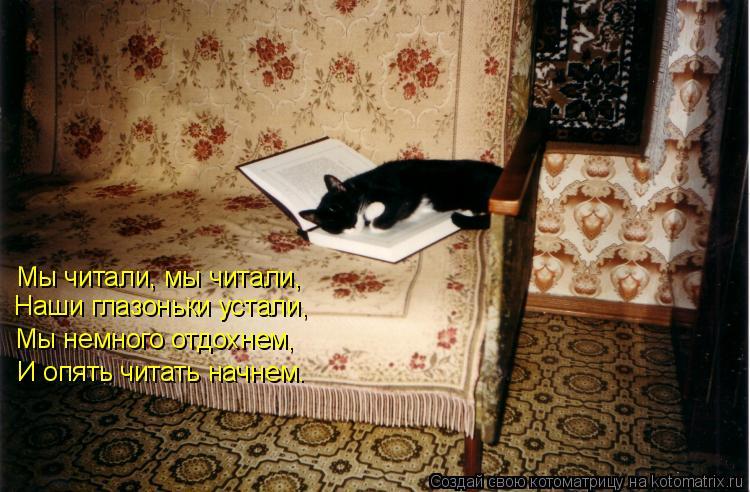 Котоматрица: Мы читали, мы читали, Наши глазоньки устали, Мы немного отдохнем, И опять читать начнем.