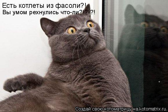Котоматрица - Есть котлеты из фасоли?! Вы умом рехнулись что-ли?!?!?!
