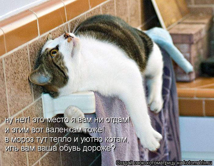 Котоматрица: ну нет! это место я вам ни отдам! и этим вот валенкам тоже! в мороз тут тепло и уютно котам, иль вам ваша обувь дороже?