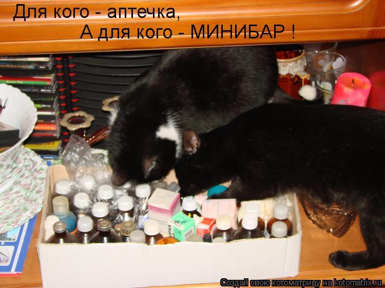 Котоматрица - Для кого - аптечка, А для кого - МИНИБАР !