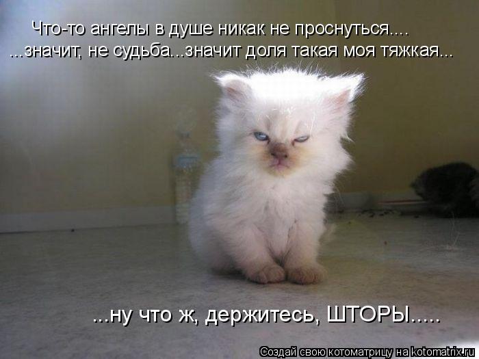 http://kotomatrix.ru/images/lolz/2012/02/02/1100181.jpg