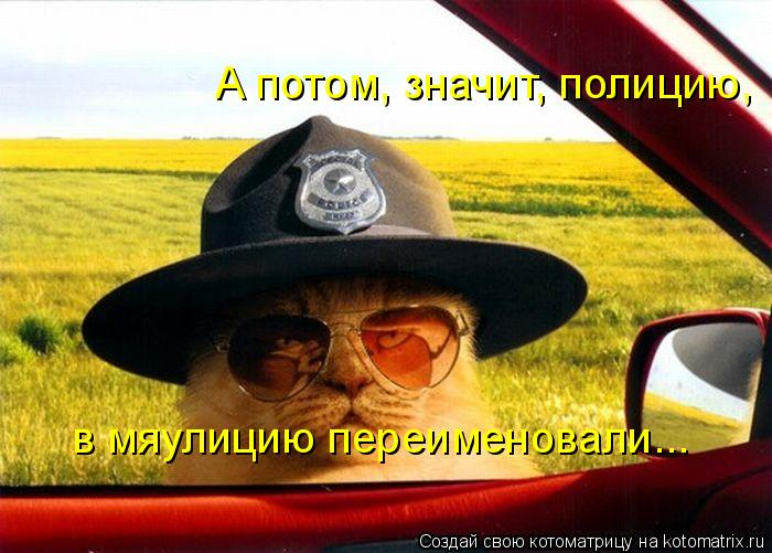 Котоматрица: А потом, значит, полицию, в мяулицию переименовали...