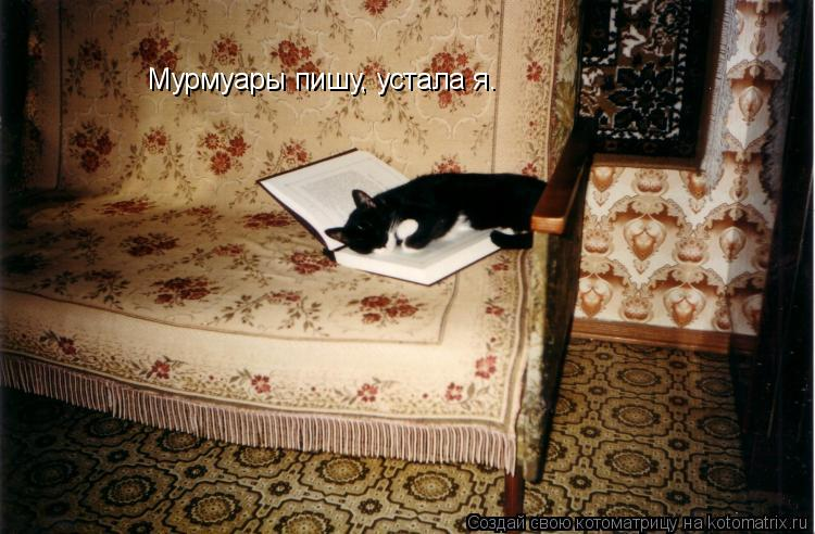Котоматрица: Мурмуары пишу, устала я.