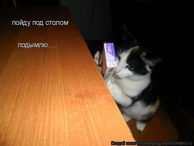 Котоматрица: пойду под столом подымлю.....