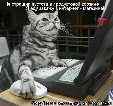 Котоматрица: Не страшна пустота в продуктовой корзине Я еду закажу в интернет - магазине!