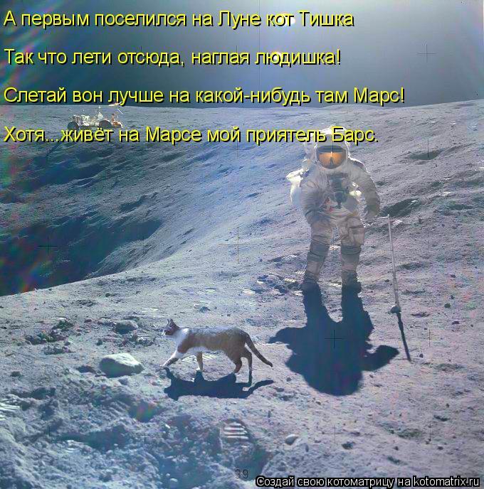 Котоматрица: А первым поселился на Луне кот Тишка Так что лети отсюда, наглая людишка! Слетай вон лучше на какой-нибудь там Марс! Хотя...живёт на Марсе мой