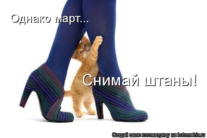 Котоматрица: Однако март... Снимай штаны!
