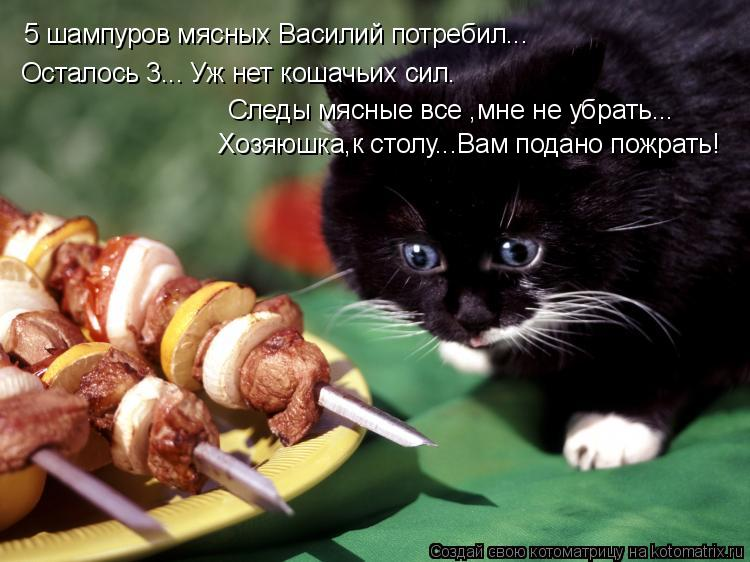 Котоматрица: 5 шампуров мясных Василий потребил... Осталось 3... Уж нет кошачьих сил. Следы мясные все ,мне не убрать... Хозяюшка,к столу...Вам подано пожрать!