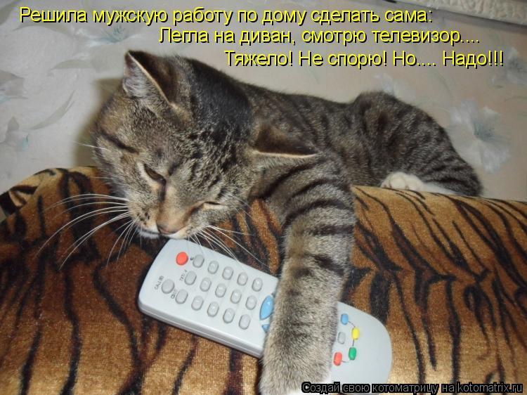 Котоматрица: Решила мужскую работу по дому сделать сама: Легла на диван, смотрю телевизор.... Тяжело! Не спорю! Но.... Надо!!!