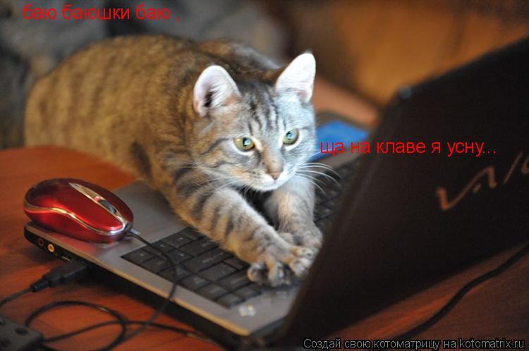 Котоматрица: баю баюшки баю , ща на клаве я усну...