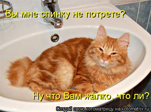 foto-devushki-rakom-v-posteli
