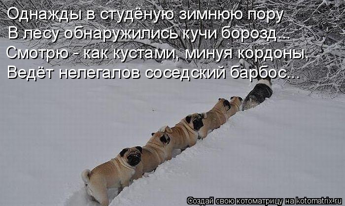 http://kotomatrix.ru/images/lolz/2012/02/07/1104412.jpg