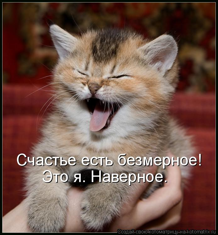 Котоматрица - Счастье есть безмерное! Это я. Наверное.