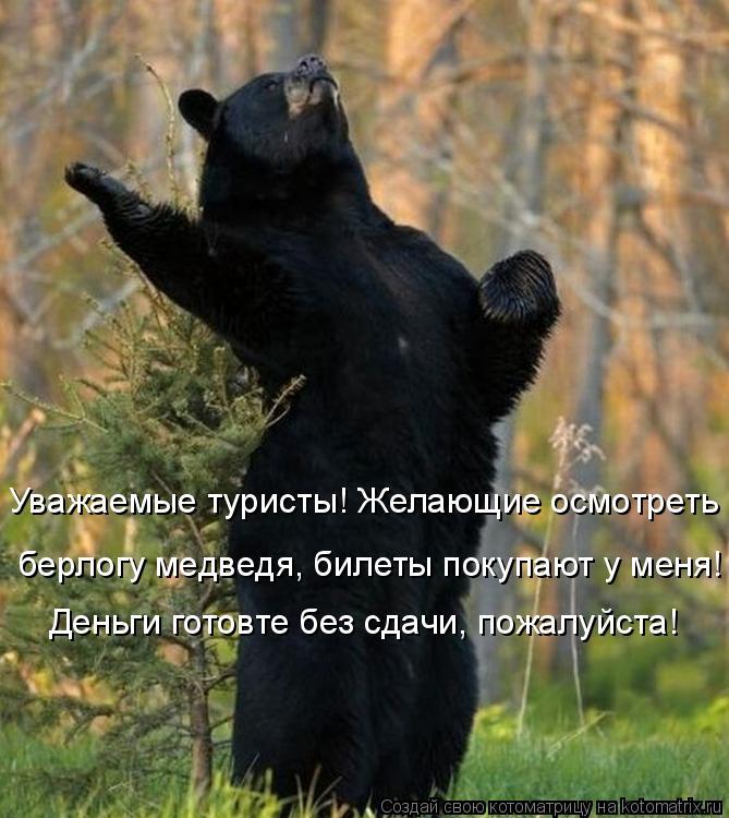 Котоматрица: Уважаемые туристы! Желающие осмотреть  берлогу медведя, билеты покупают у меня!  Деньги готовте без сдачи, пожалуйста!