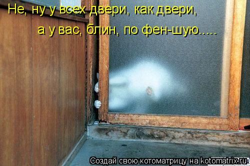 Котоматрица: Не, ну у всех двери, как двери, а у вас, блин, по фен-шую.....