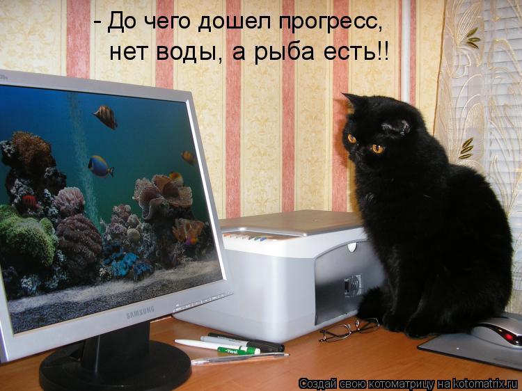 Котоматрица: - До чего дошел прогресс, нет воды, а рыба есть!!
