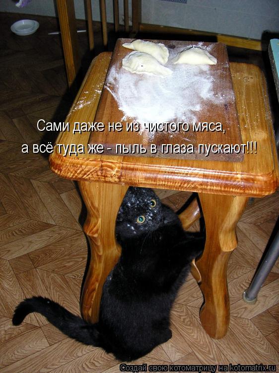 Котоматрица - Сами даже не из чистого мяса, а всё туда же - пыль в глаза пускают!!!