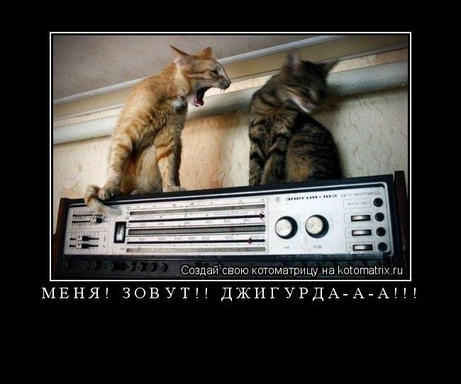 Котоматрица: Меня! Зовут!! Джигурда-а-а!!!