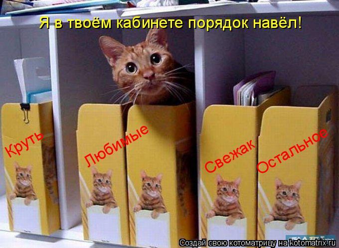 Котоматрица: Я в твоём кабинете порядок навёл! Круть Любимые Свежак Остальное