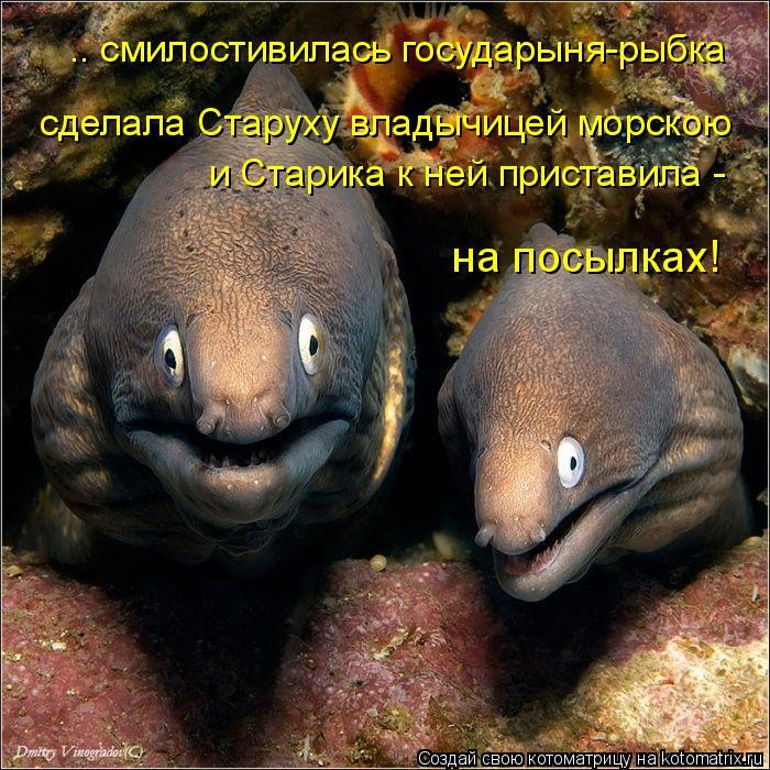 Котоматрица: .. смилостивилась государыня-рыбка сделала Старуху владычицей морскою и Старика к ней приставила - на посылках!