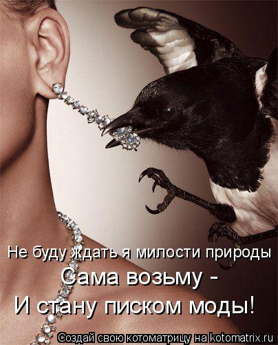 Котоматрица: Не буду ждать я милости природы Сама возьму - И стану писком моды!