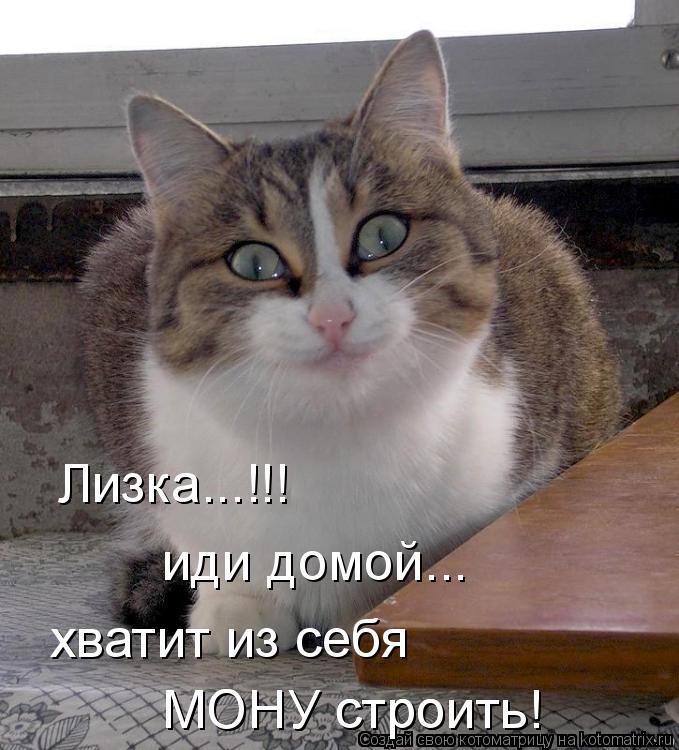 Котоматрица - Лизка...!!! иди домой... хватит из себя  МОНУ строить! МОНУ строить!