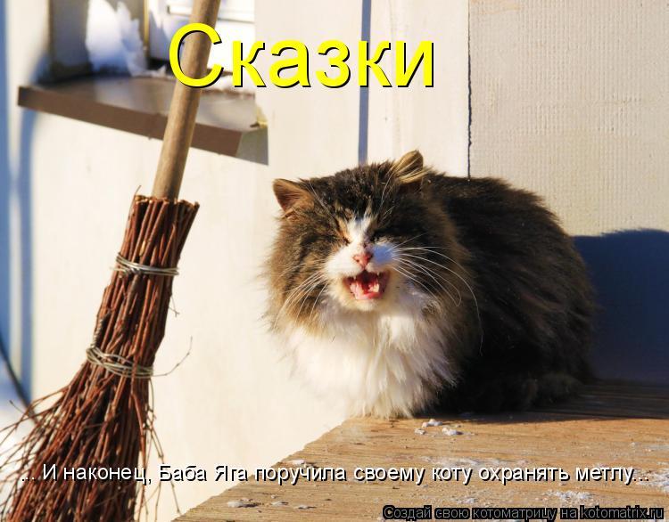 Котоматрица: ... И наконец, Баба Яга поручила своему коту охранять метлу... Сказки