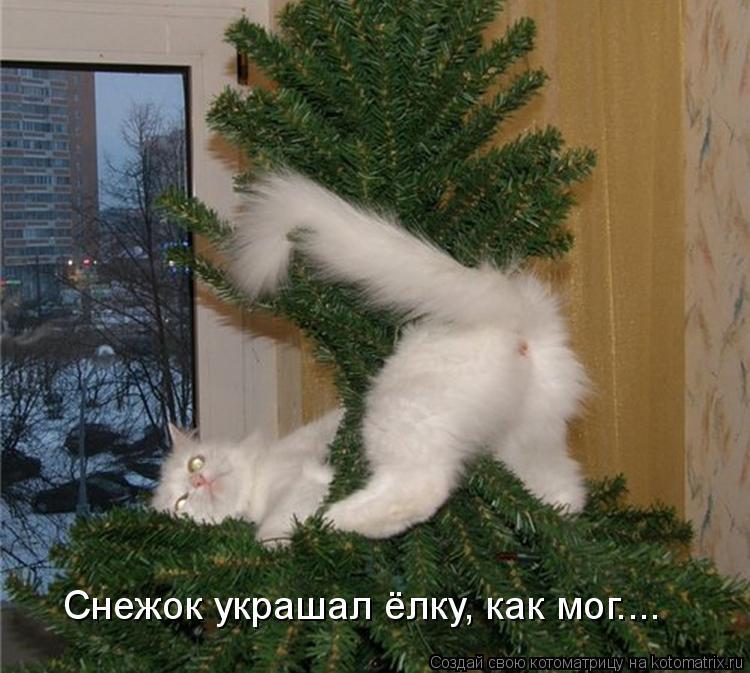 Котоматрица: Снежок украшал ёлку, как мог....