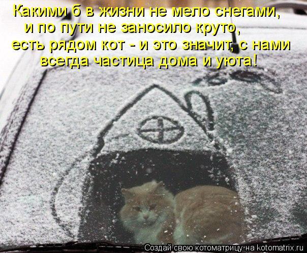 Котоматрица: Какими б в жизни не мело снегами, и по пути не заносило круто, есть рядом кот - и это значит, с нами всегда частица дома и уюта!