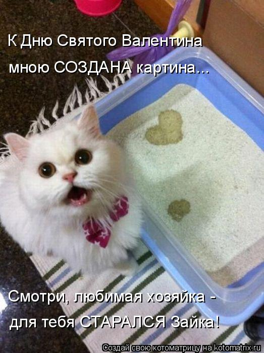 Котоматрица: К Дню Святого Валентина мною СОЗДАНА картина... Смотри, любимая хозяйка - для тебя СТАРАЛСЯ Зайка!