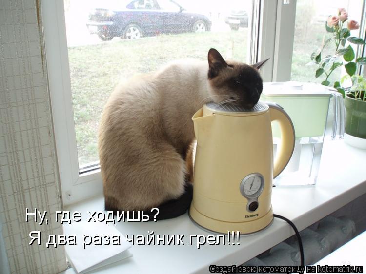 Котоматрица - Ну, где ходишь?  Я два раза чайник грел!!!