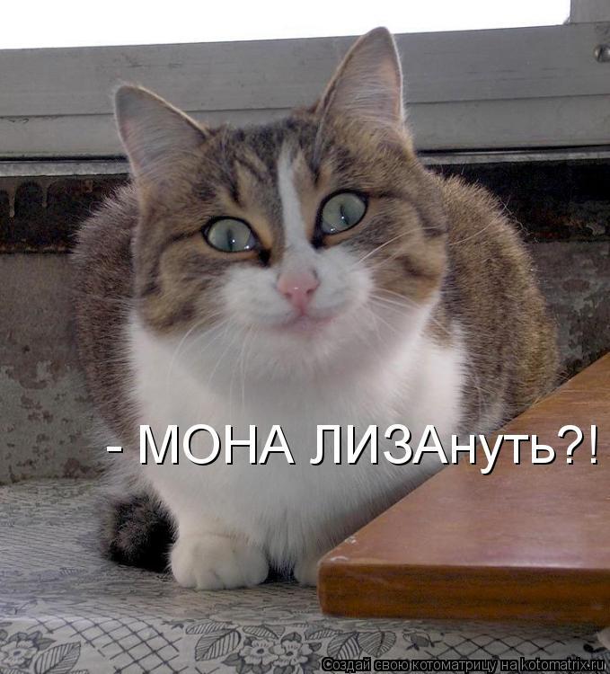Котоматрица: - МОНА ЛИЗАнуть?!