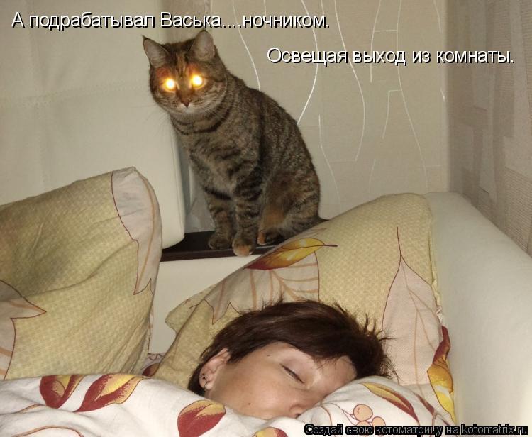 Котоматрица: А подрабатывал Васька....ночником. Освещая выход из комнаты.