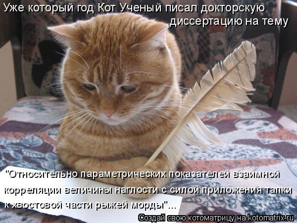 http://kotomatrix.ru/images/lolz/2012/02/11/1108584.jpg