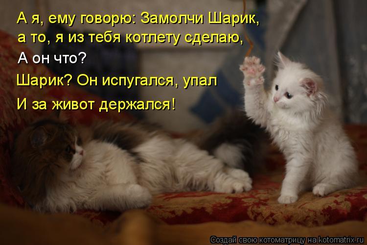 Котоматрица - А я, ему говорю: Замолчи Шарик,  а то, я из тебя котлету сделаю, А он
