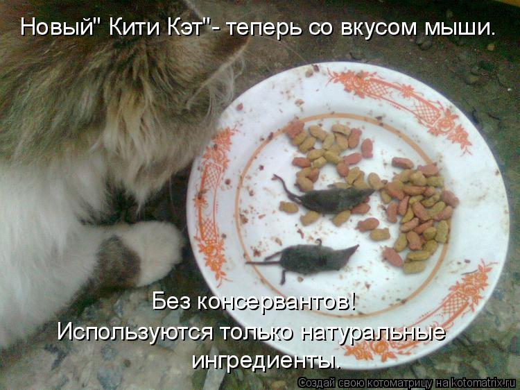 """Котоматрица: Новый"""" Кити Кэт""""- теперь со вкусом мыши. Используются только натуральные  ингредиенты. Без консервантов!"""