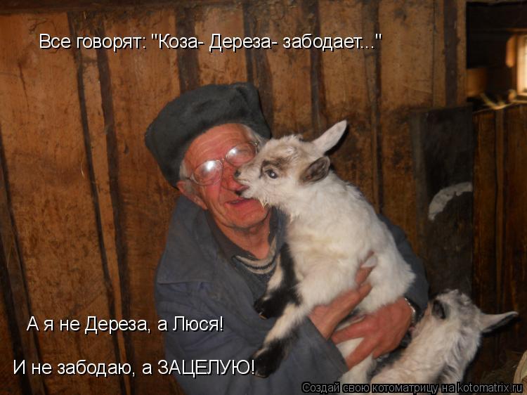Анекдот Коза