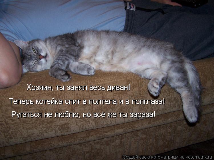 Котоматрица: Хозяин, ты занял весь диван! Теперь котейка спит в полтела и в полглаза! Ругаться не люблю, но всё же ты зараза!