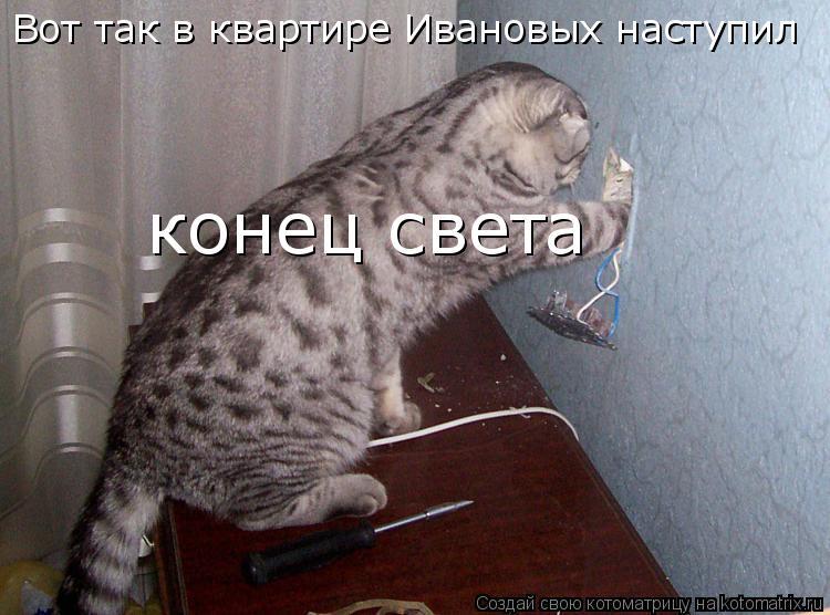 Котоматрица: Вот так в квартире Ивановых наступил конец света