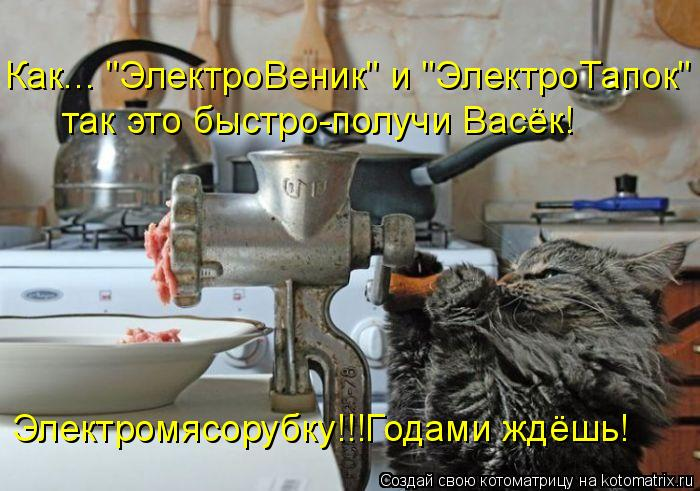 "Котоматрица - Как... ""ЭлектроВеник"" и ""ЭлектроТапок"" так это быстро-получи Васёк! Эл"