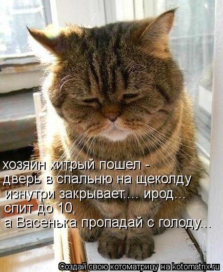 Котоматрица: хозяин хитрый пошел - дверь в спальню на щеколду  изнутри закрывает.... ирод...  спит до 10, а Васенька пропадай с голоду...