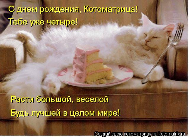 Котоматрица: С днем рождения, Котоматрица! Тебе уже четыре! Расти большой, веселой Будь лучшей в целом мире!
