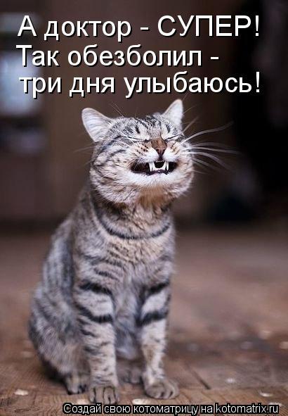 Котоматрица - А доктор - СУПЕР! Так обезболил -  три дня улыбаюсь!