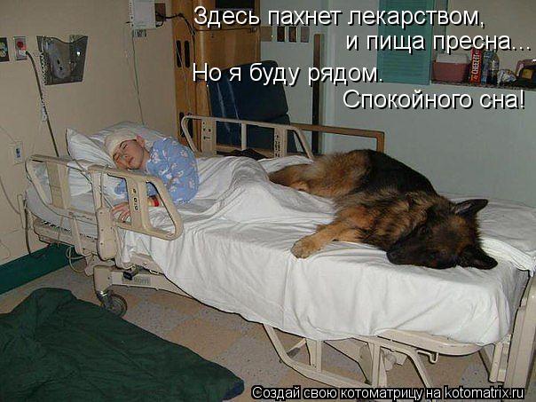 Котоматрица: Здесь пахнет лекарством,  и пища пресна... Но я буду рядом. Спокойного сна!