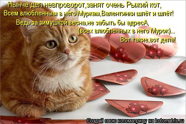 Котоматрица: Нынче дел невпроворот,занят очень Рыжий кот, Всем влюбленным в него Муркам,Валентинки шлёт и шлёт! Ведь за зимушкой весна,не забыть бы адрес
