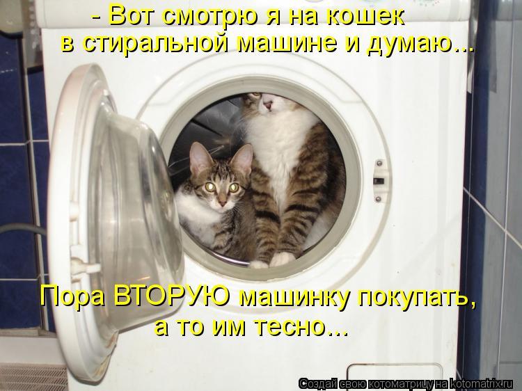 Котоматрица - - Вот смотрю я на кошек  в стиральной машине и думаю... Пора ВТОРУЮ ма