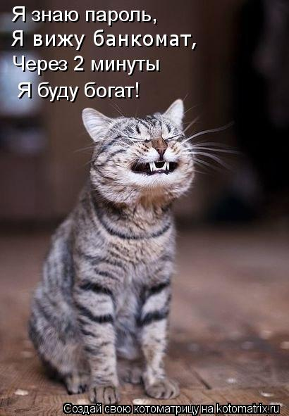 http://kotomatrix.ru/images/lolz/2012/02/15/1111973.jpg
