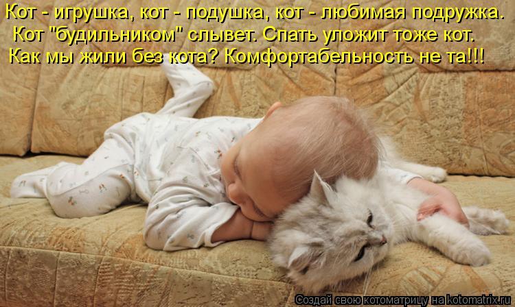 """Котоматрица: Кот - игрушка, кот - подушка, кот - любимая подружка. Кот """"будильником"""" слывет. Спать уложит тоже кот. Как мы жили без кота? Комфортабельность н"""