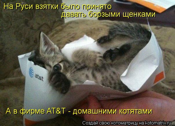 Котоматрица: На Руси взятки было принято давать борзыми щенками А в фирме AT&T - домашними котятами